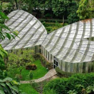 jardin-botanico-850x459